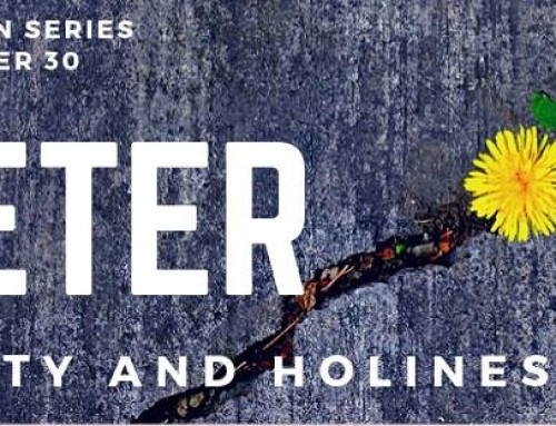 Hostility and Holiness – 1 Peter – 2018