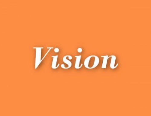 Vision Series – 2017